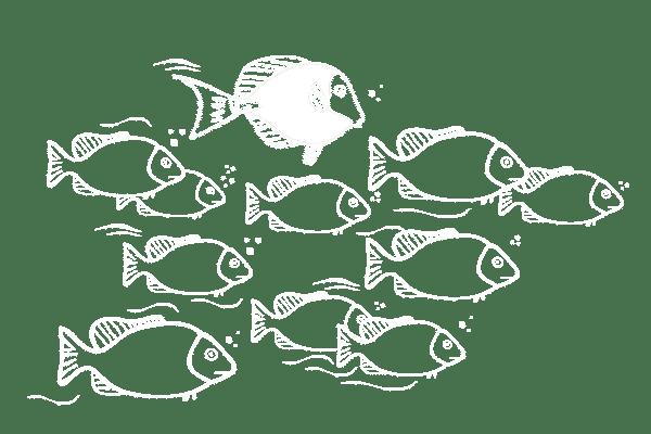 liderazgo transversal