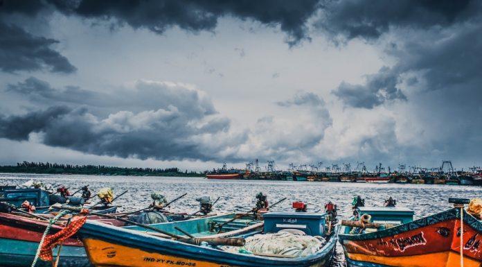Cultura del mar